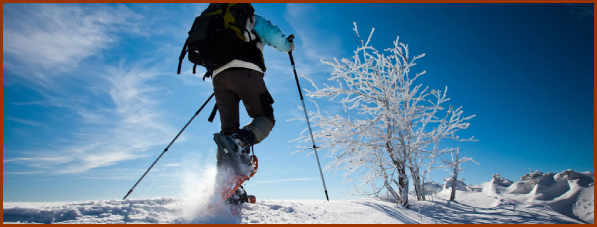 Raquette et Ski de fond
